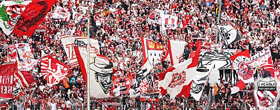 1. FC Köln Südkurve