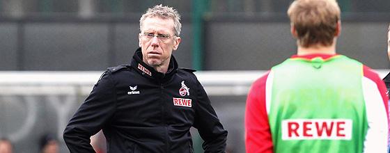 Peter Stöger, Trainer des 1.FC Köln