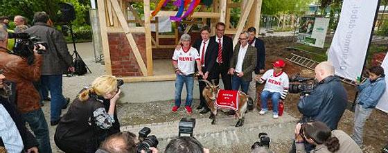 Hennes VIII, Maskottchen des 1. FC Köln weiht zusammen mit Alexander Wehrle und Toni Schumacher neues Zuhause im Kölner Zoo ein