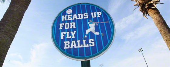 "Schild ""HEADS UP FOR FLY BALLS"" vor Himmel und Palmen in Florida"