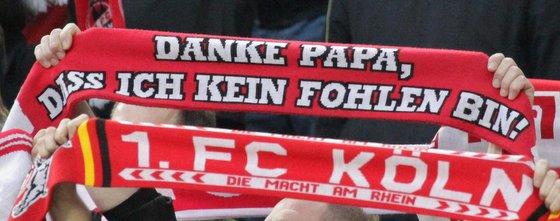 FC-Fanschal Danke Papa dass ich kein Fohlen bin!