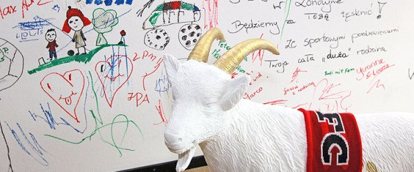 FC-Geißbock Hennes vor Wand mit Botschaften