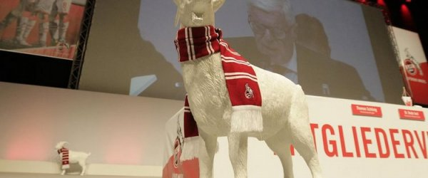 1. FC Köln Mitgliederversammlung